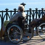 couple wheelchair seaside